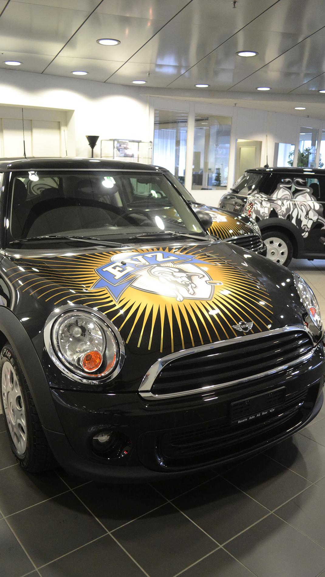 EVZ Fan Car
